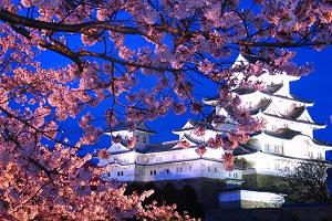 姫路城ライトアップ.PNG